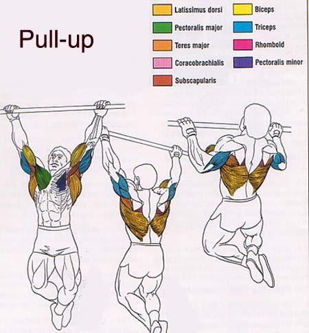 Pullupic