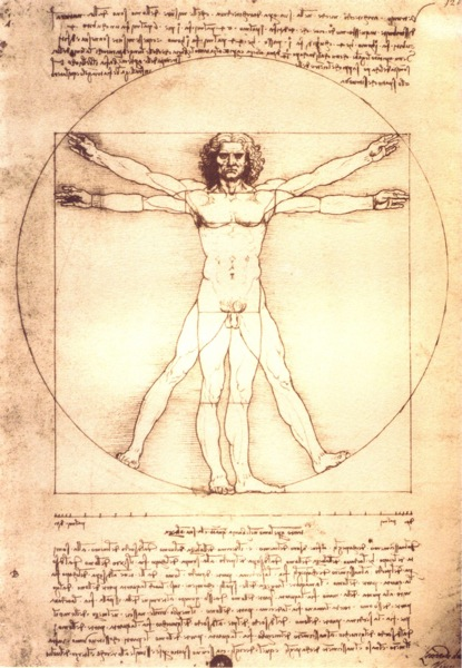 The human body; a trainers view (mine, anyway). (2/4)